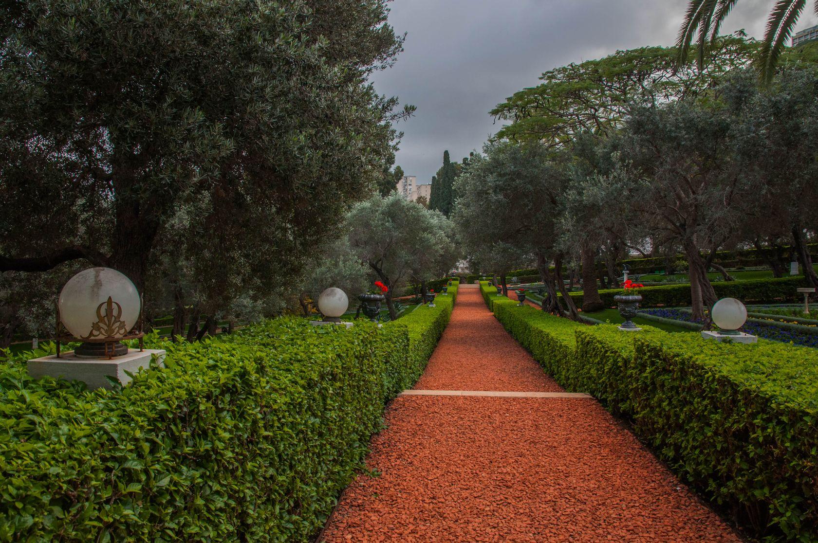 Бахайские сады в Хайфе самые красивые фото