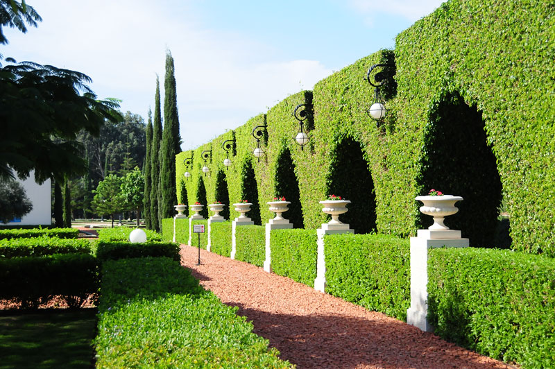 фото: Бахайские сады в Хайфе - блог про Израиль