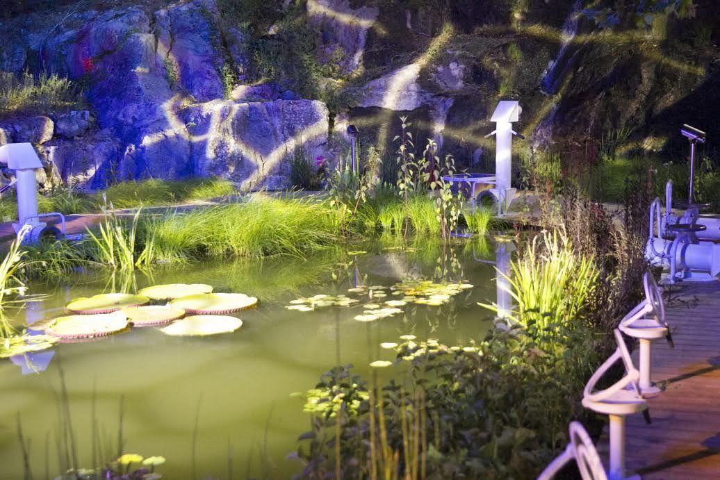 Озеро в саду - Блог про Израиль
