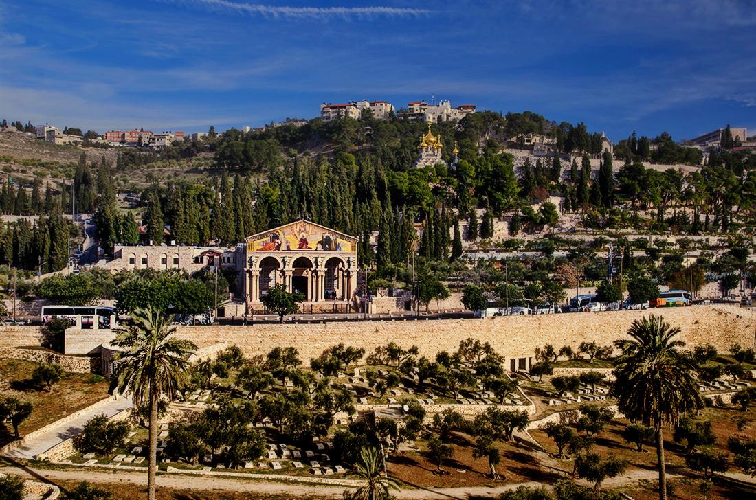 Гефсимания - Блог про Израиль