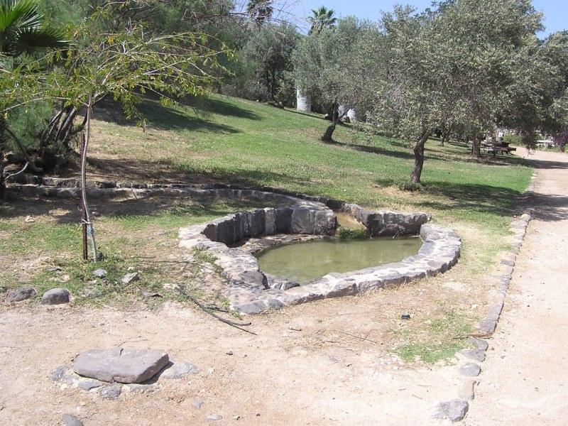 Парк Хамат Твери - Блог про Израиль