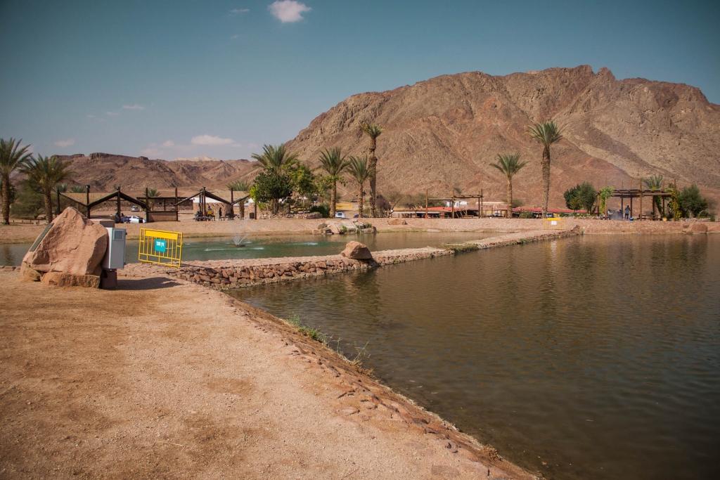 Озеро в парке Тимна - Блог про Израиль