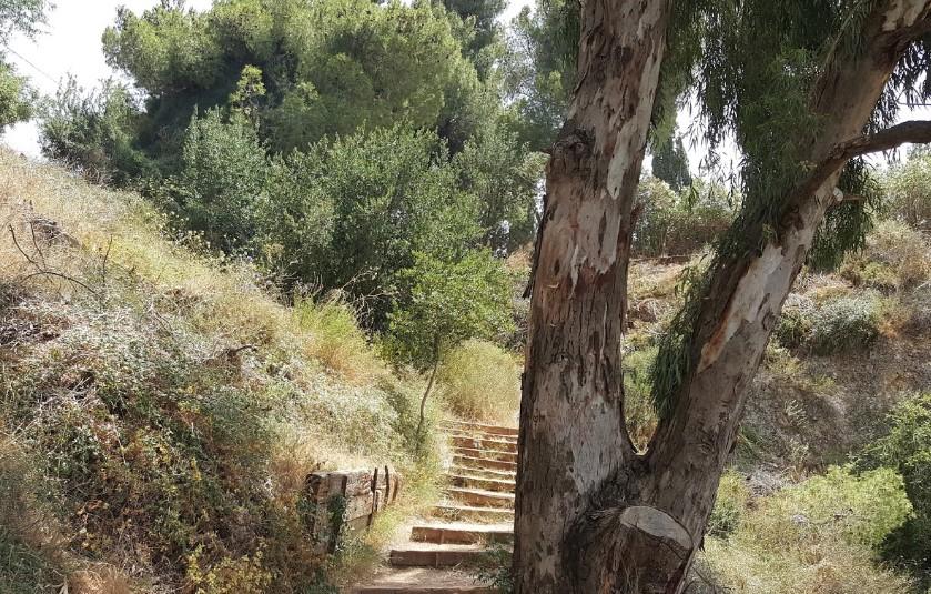 Национальный парк - Блог про Израиль