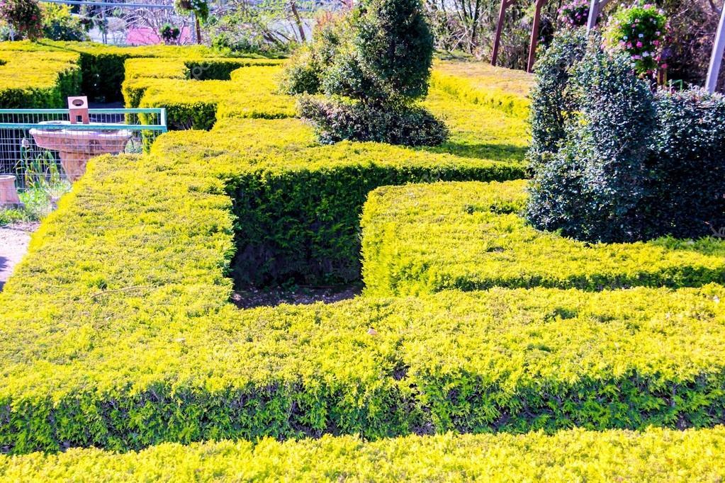 Лабиринты в парке Утопия - Блог про Израиль