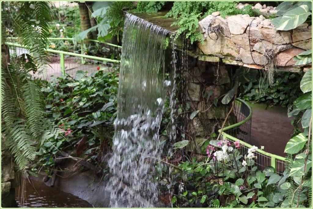 Водопад в парке - Блог про Израиль