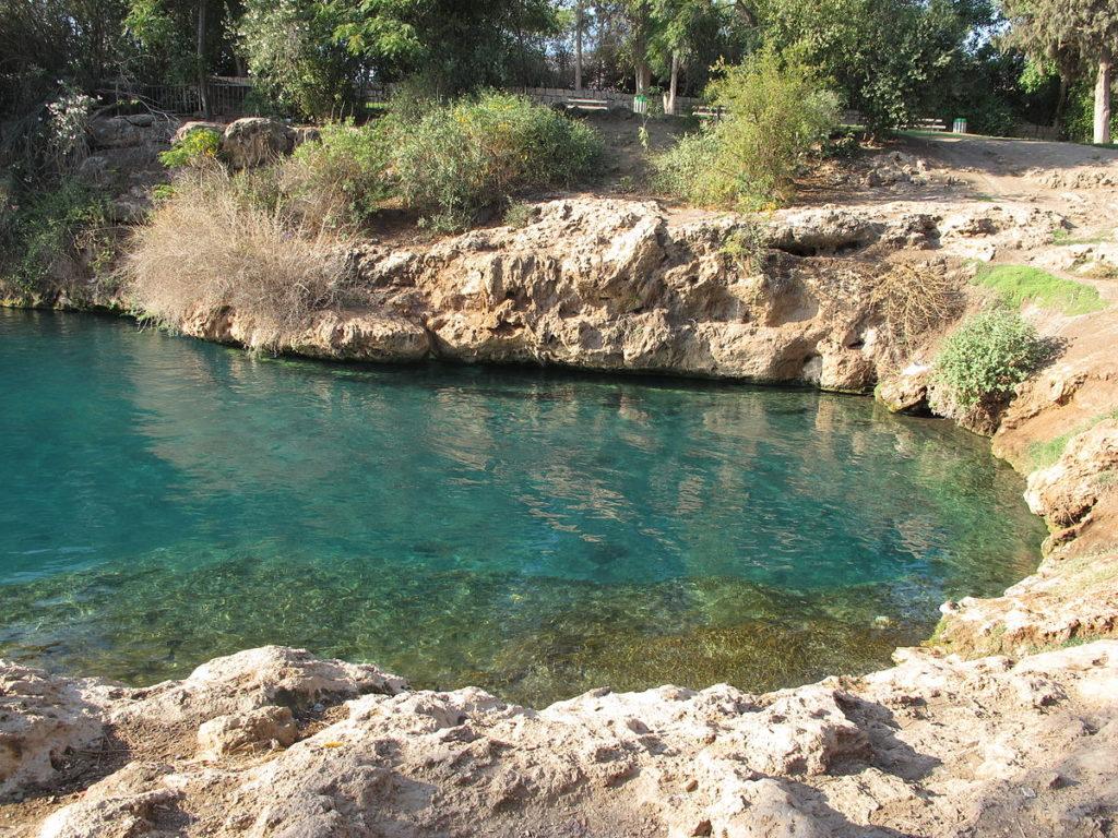 Озера парка - Блог про Израиль