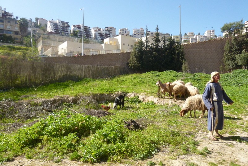 Назаретская деревня - Блог про Израиль
