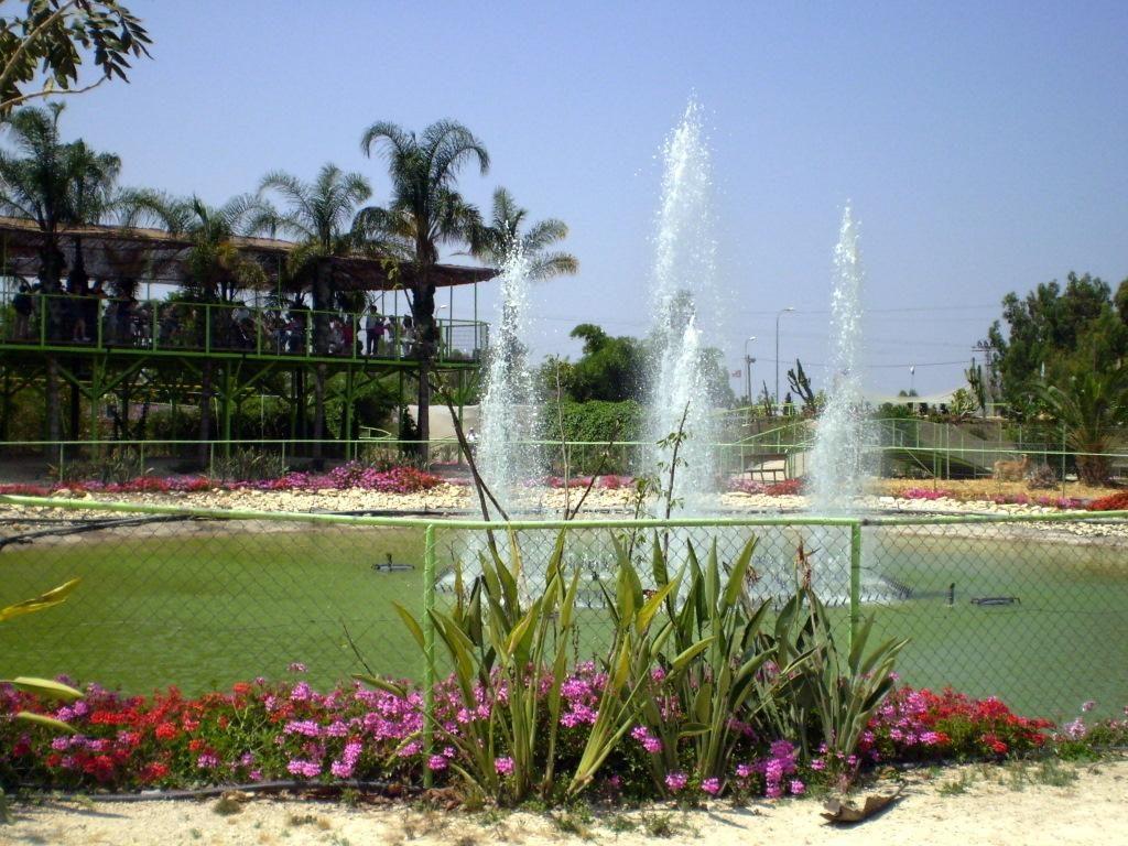 Парки Израиля - Блог про Израиль