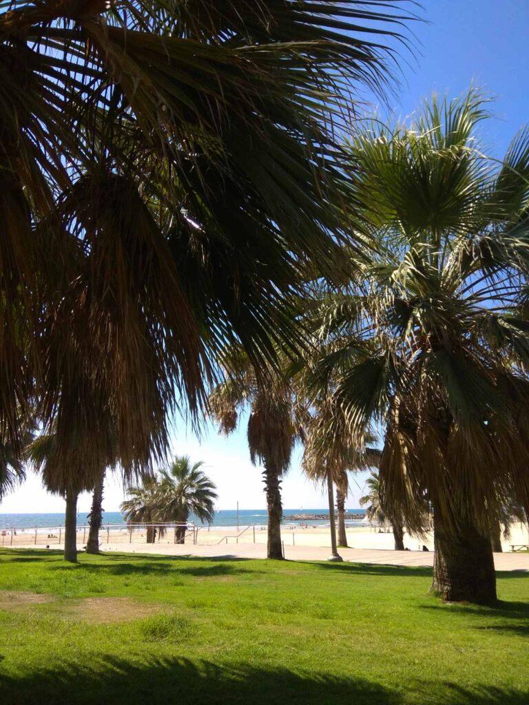 Море Израиль - Блог про Израиль